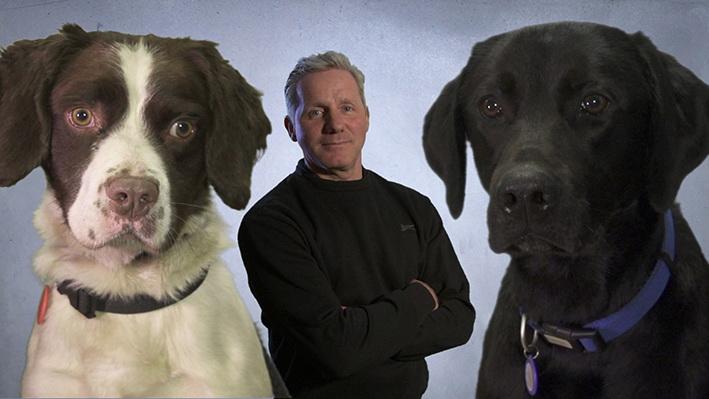 Psi za opasne situacije 1